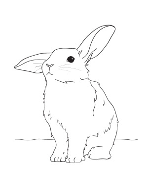 300x388 Cute Easter Bunny Coloring Pages