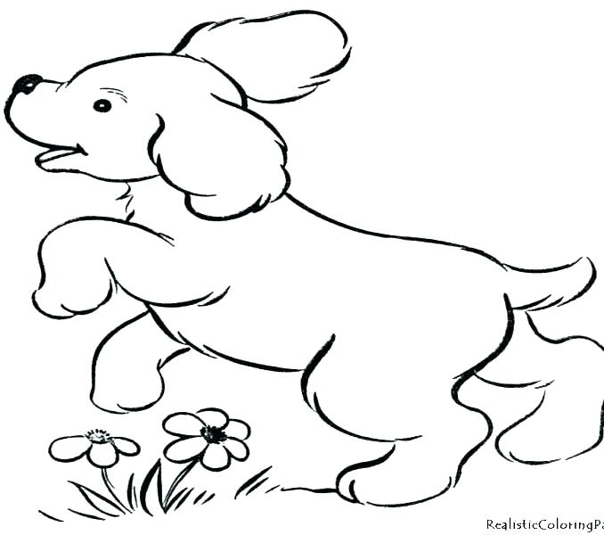678x600 Coloring Pages Dogs And Puppies Doggy Coloring Pages Cute Puppy