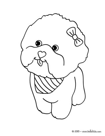 363x470 Maltese Dog Puppy Coloring Page For Kids Add Some Colors