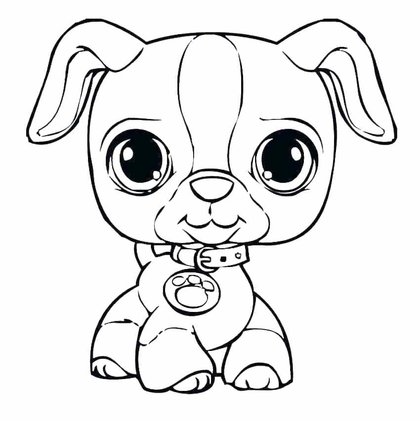 850x855 Coloring Cartoon Puppy Coloring Pages Dog Puppies Cute Free Pet