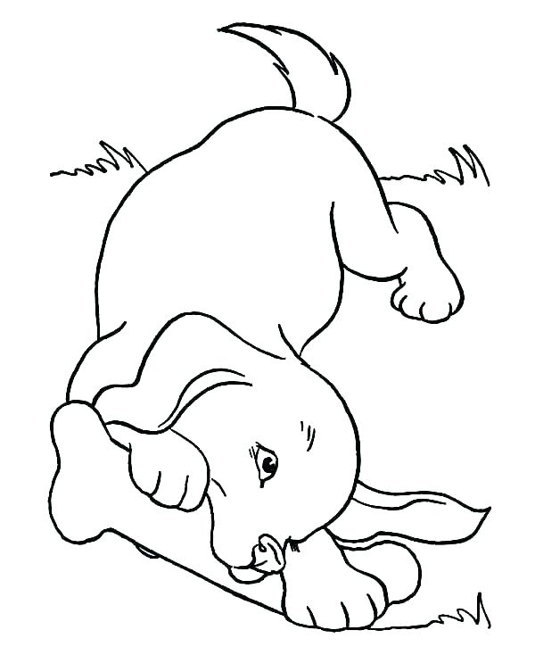 600x734 Coloring Pages Of Cute Dogs And Puppies Devon Creamteas