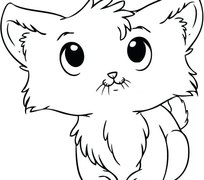 678x600 Cute Kitten Pictures To Print Cute Cats Coloring Pages Cute Cat