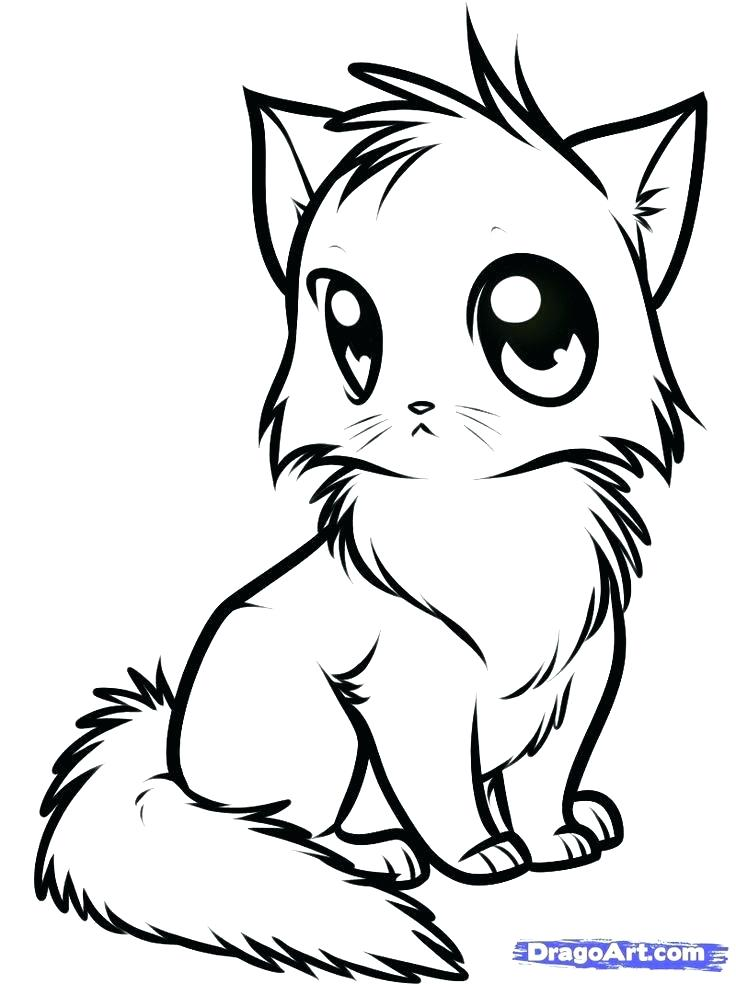 736x984 Cute Kittens Coloring Pages Wonderful Cute Kitten Coloring Pages