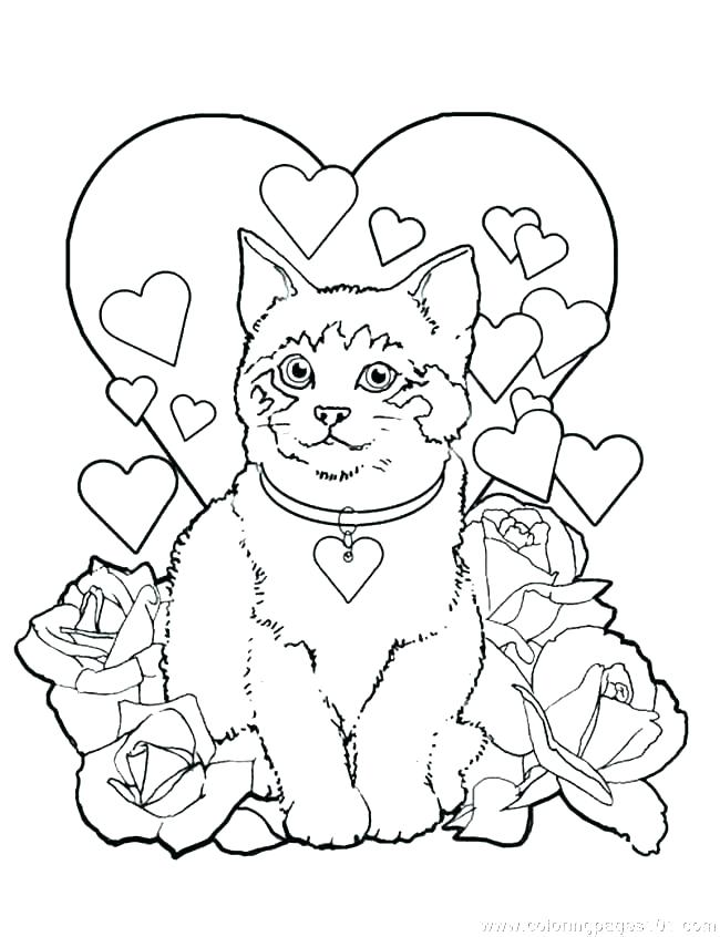 650x846 Cute Kitten Cat Coloring Pages Dog