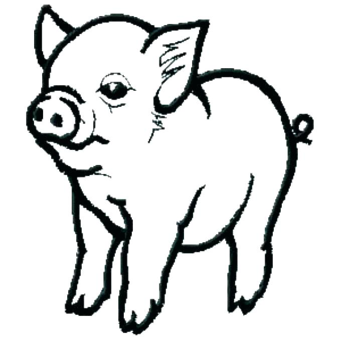 680x680 Coloring Pages Pig Pig Coloring Pages Pig Coloring Pages Baby Pig