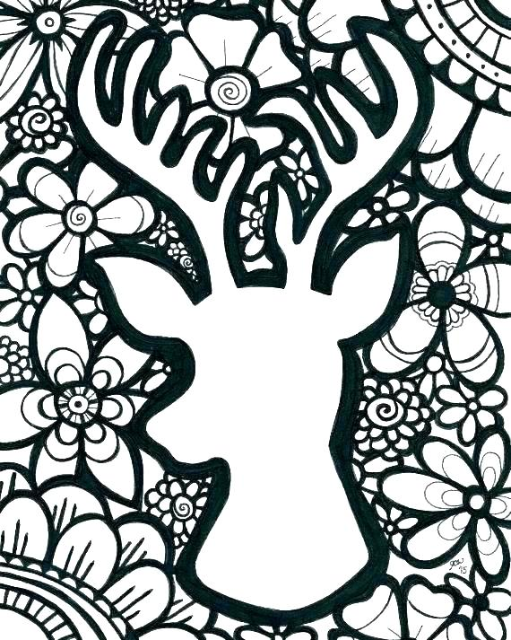 570x713 Whitetail Deer Coloring Pages Deer Coloring Page Whitetail Deer