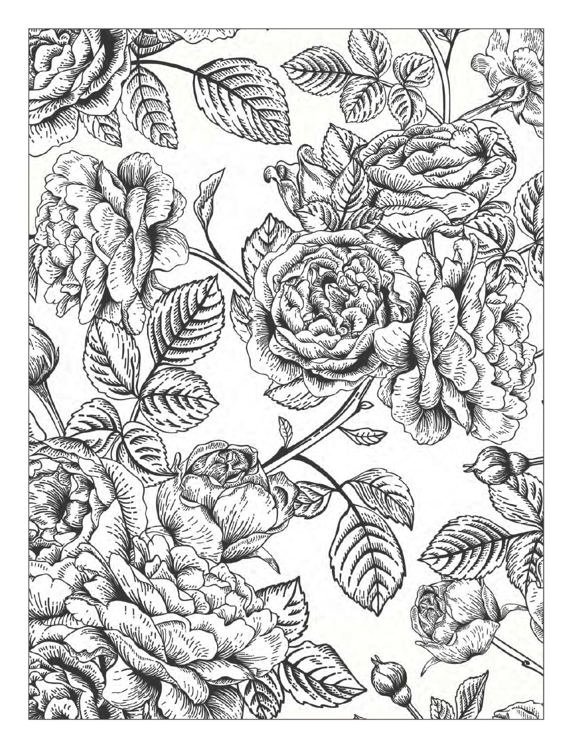 The Best Free Stoner Coloring Page Images Download From 50 Free