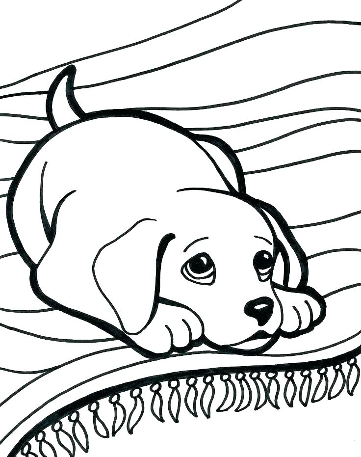 736x931 Dogs Coloring Pages Also Dog Type Coloring Pages Dog And Cat Dogs