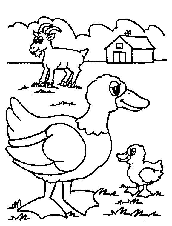 576x757 Farm Animal Coloring Pages For Preschoolers Preschool Farm