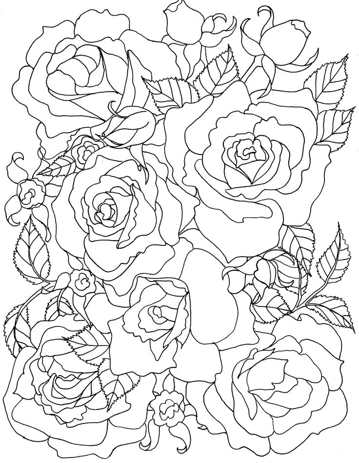 Coloring Pages Of Flowers And Roses