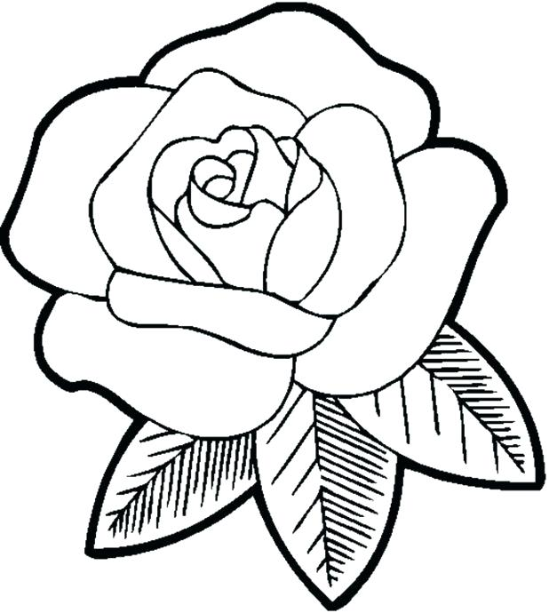 618x690 Printable Rose Coloring Pages Free Rose Coloring Pages Roses