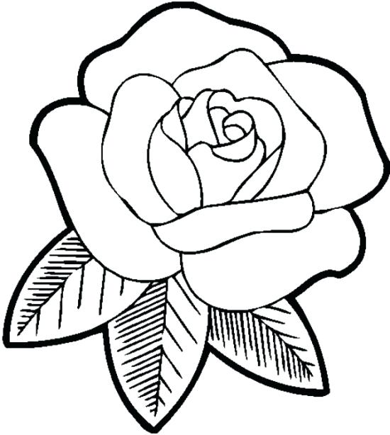 550x614 Roses Coloring Page Roses Coloring Pages Roses Coloring Pages