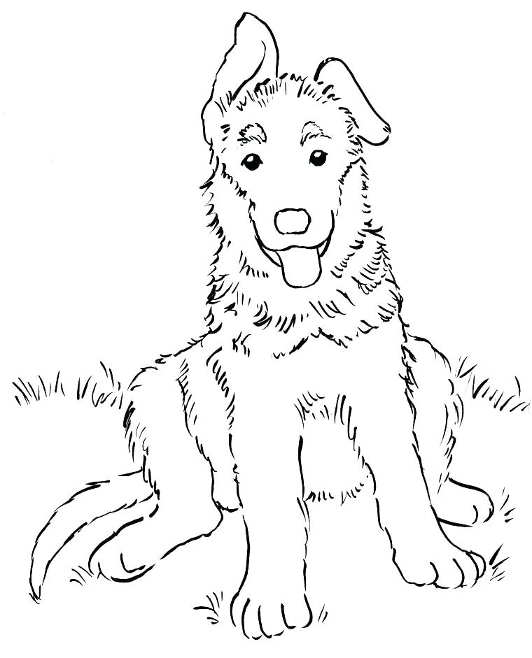 760x941 Shepherd Coloring Pages Golden Retriever Coloring Pages Shepherd