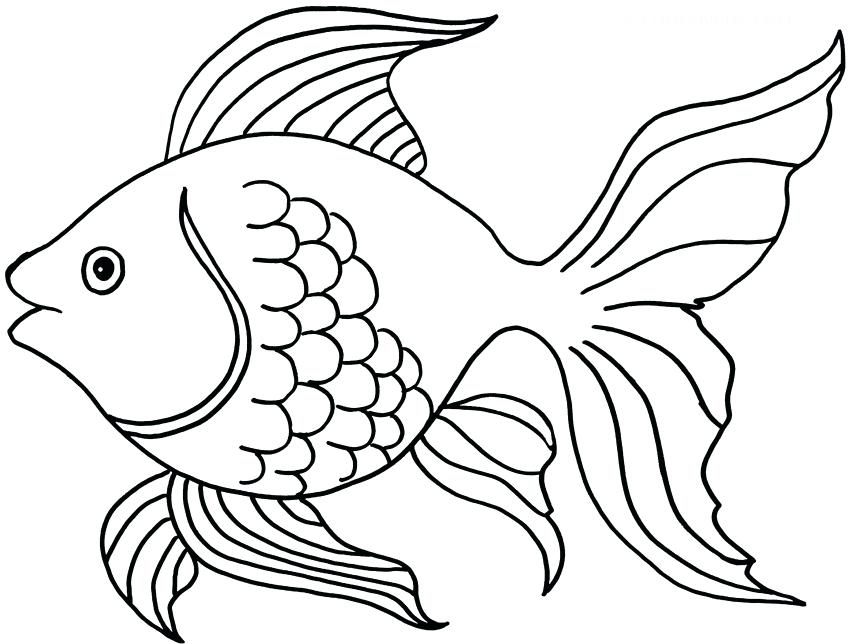 Coloring Pages Of Goldfish at GetDrawings.com | Free for ...