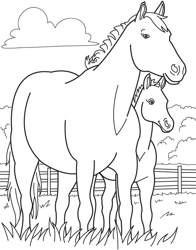 Coloring Pages Of Horses And Foals