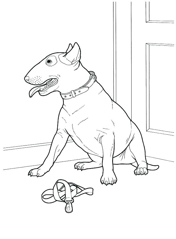 618x836 Husky Puppy Coloring Pages Also Husky Puppy Coloring Pages Husky