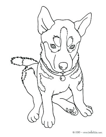 363x470 Siberian Husky Coloring Pages Husky Coloring Pages Husky Dog