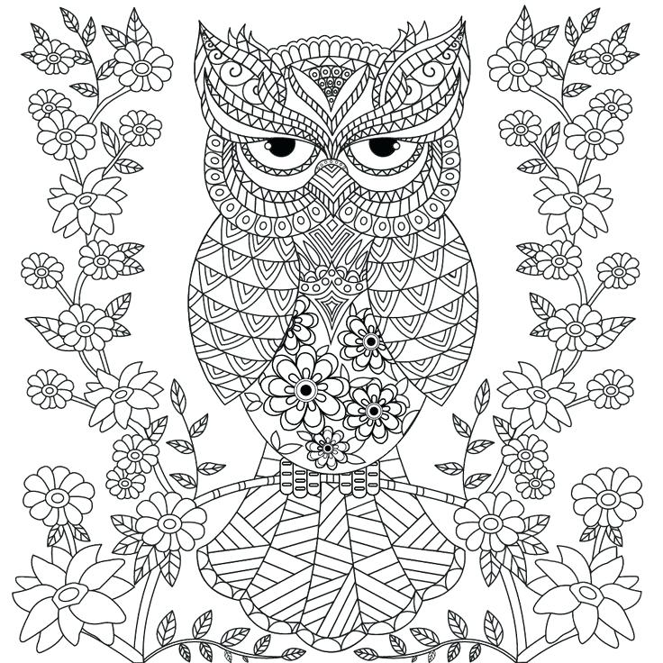 736x736 Adult Coloring Pages Owls Coloring Pages Of Peoples Names