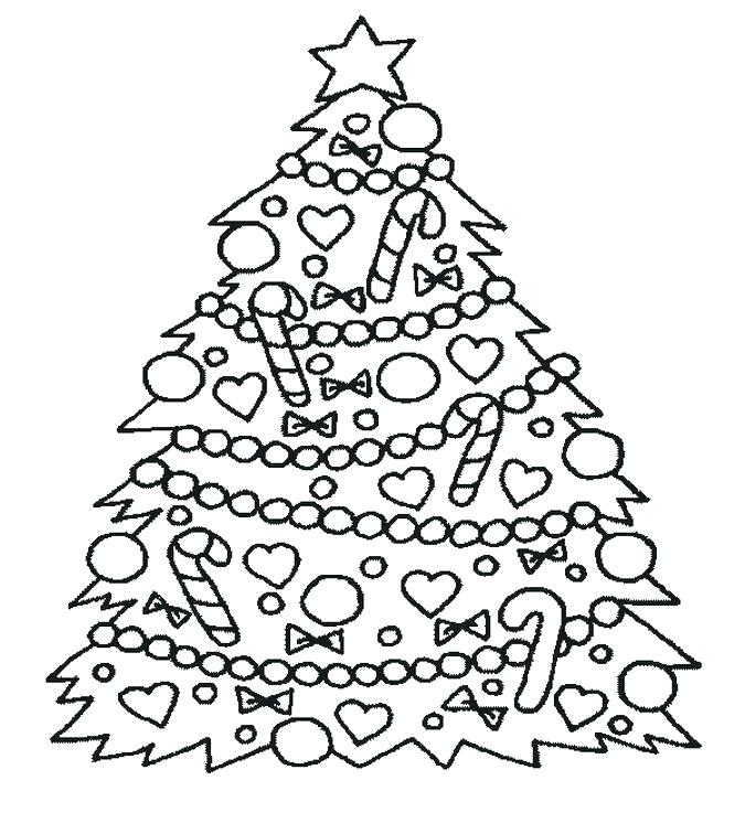 675x756 Coloring Pages Trees Pine Tree Coloring Pages Pine Trees Coloring