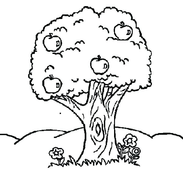 600x558 Trees And Flowers Coloring Pages Page Image Images Johnny Coloring
