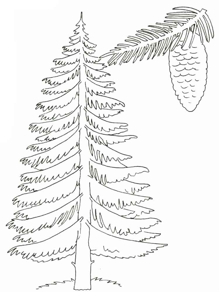 750x1000 Trees Coloring Pages Download And Print Trees Coloring Pages