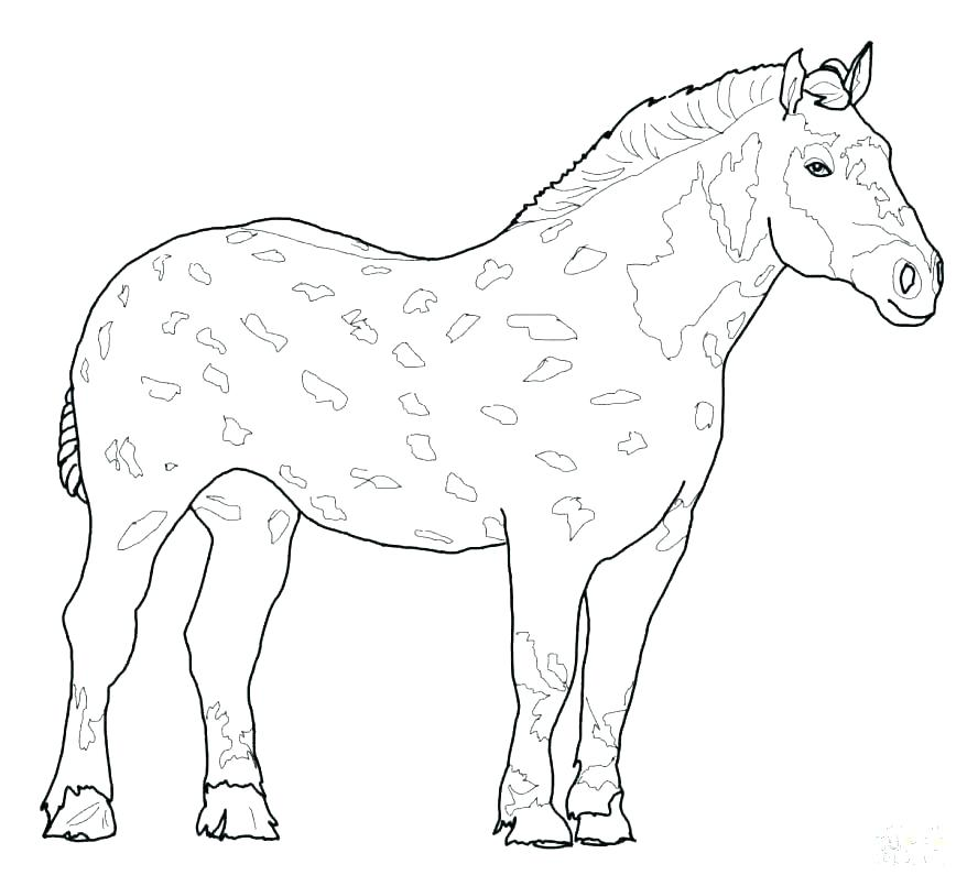 Coloring Pages Of Realistic Horses at GetDrawings | Free ...