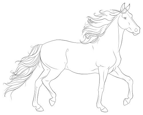 Coloring Pages Of Realistic Horses at GetDrawings.com | Free for ...