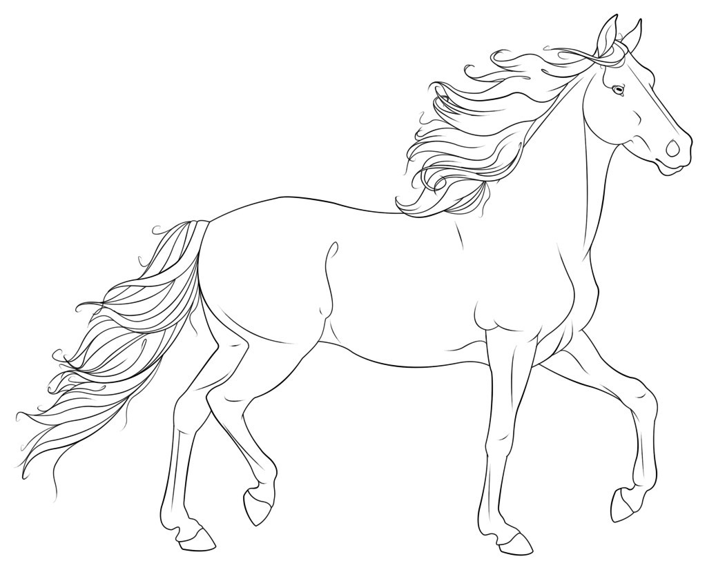 Coloring Pages Of Realistic Horses At Getdrawings Free Download
