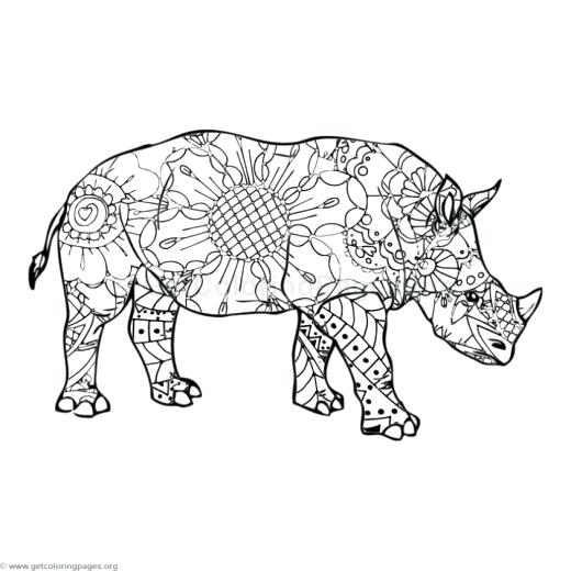 520x520 Rhino Coloring Page Rhino Coloring Pages Rhino Beetle Coloring