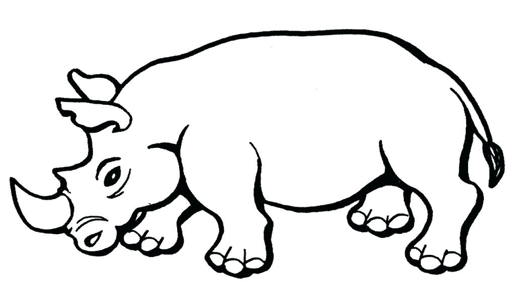 1024x598 Woolly Rhino Coloring Pages Rhino Coloring Page Rhino Coloring