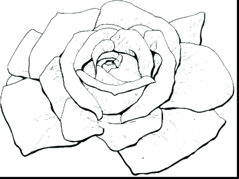 970x727 Coloring Pages Roses Coloring Roses Free Coloring Pages