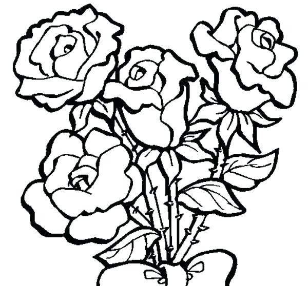 600x558 Coloring Pages Roses Four Roses In Rose Coloring Page Coloring