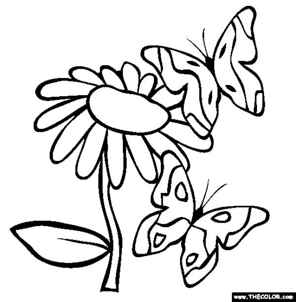 600x612 Flower Color Page Advanced Flower Color Pages Color Bros