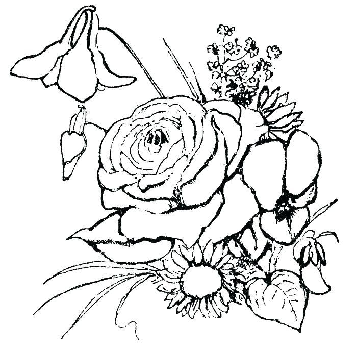 700x688 Coloring Pages Flowers Coloring Pages Flowers And Butterflies Miss
