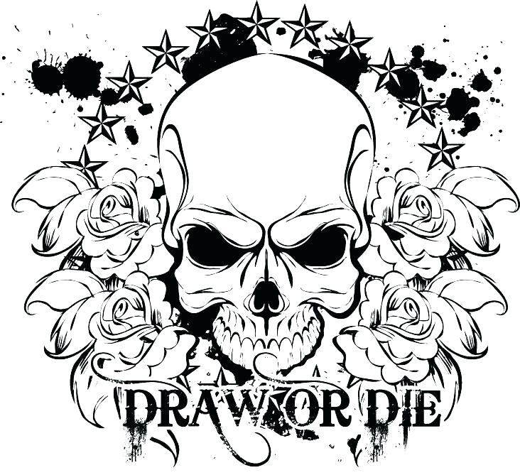 732x669 Skull Coloring Pages Anatomy Skull Coloring Pages Anatomy Art