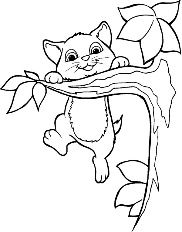 600x764 Branch Tree And Cat Coloring Page Tree