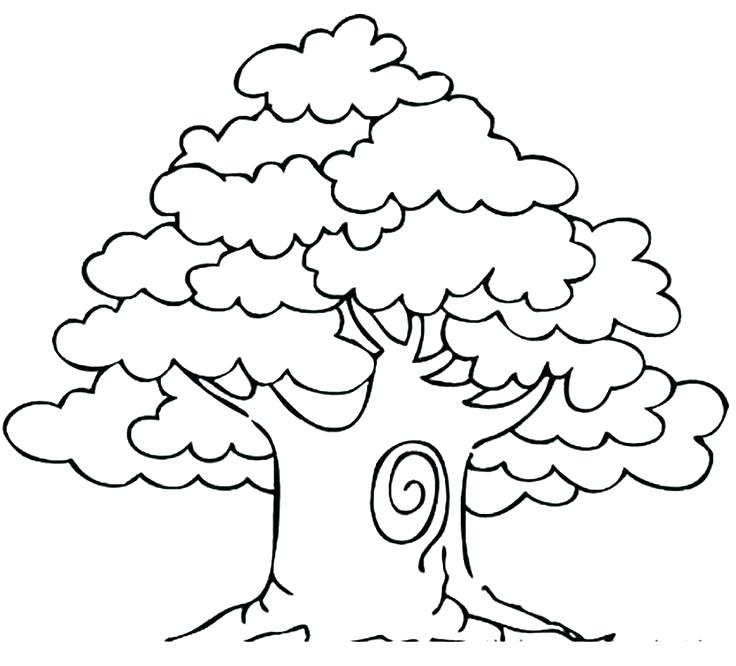 736x666 Coloring Pages Of Trees Tree Printable Coloring Page Shrub