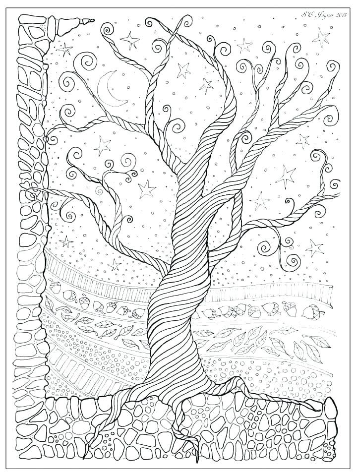 720x960 Trees Coloring Pages Coloring Pages Of A Tree Free Printable Tree