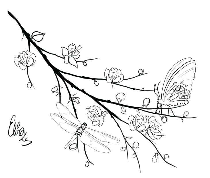 730x619 Branch Coloring Page Dragonfly And Butterfly Perching On Cherry