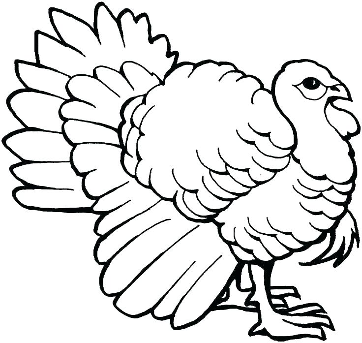736x697 Coloring Page Turkey Thanksgiving Coloring Pages Printable Turkey