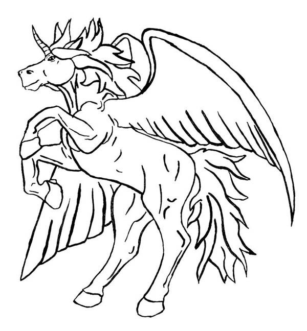 600x648 Unicorn With Wings Coloring Pages Free Coloring Pages