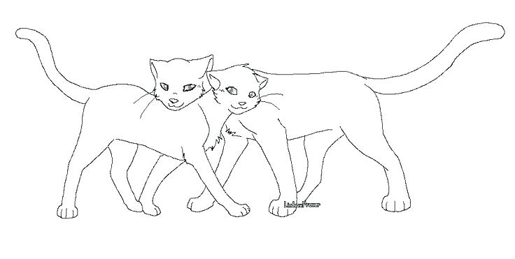 736x371 Lovely Warrior Cat Coloring Pages For Warrior Cat Clan Coloring