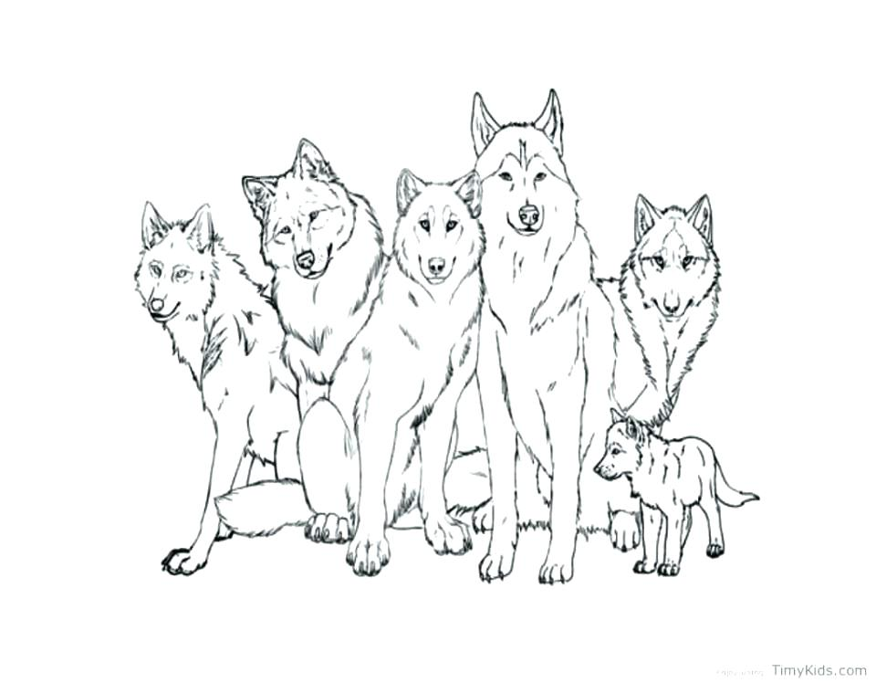 960x748 Cute Anime Wolf Coloring Pages Color Page