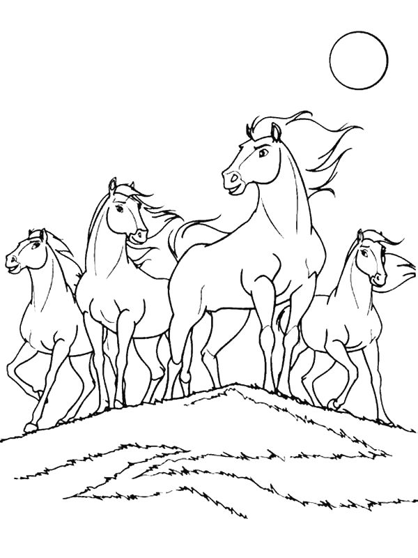 Coloring Pages On Horses
