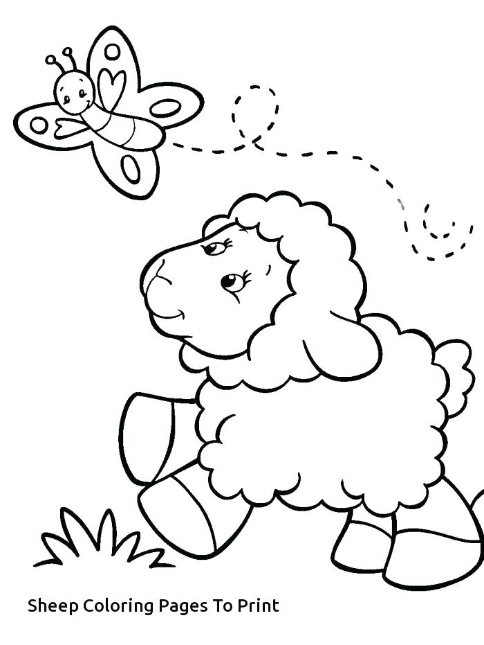 700x931 Sheep Outline For Craft Sheep Outline Coloring Pages Funny
