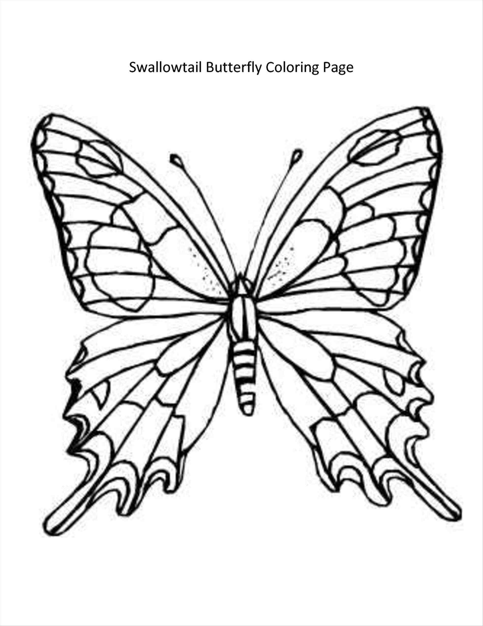 1900x2458 Butterfly Coloring Pages Pdf Kidsnfun Coloring Pages