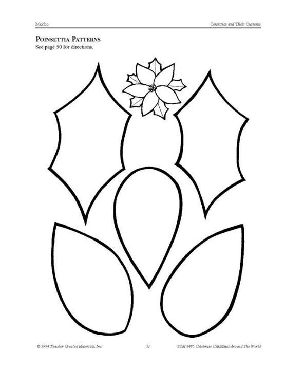 Coloring Pages Poinsettia Flower At Getdrawings Com Free For