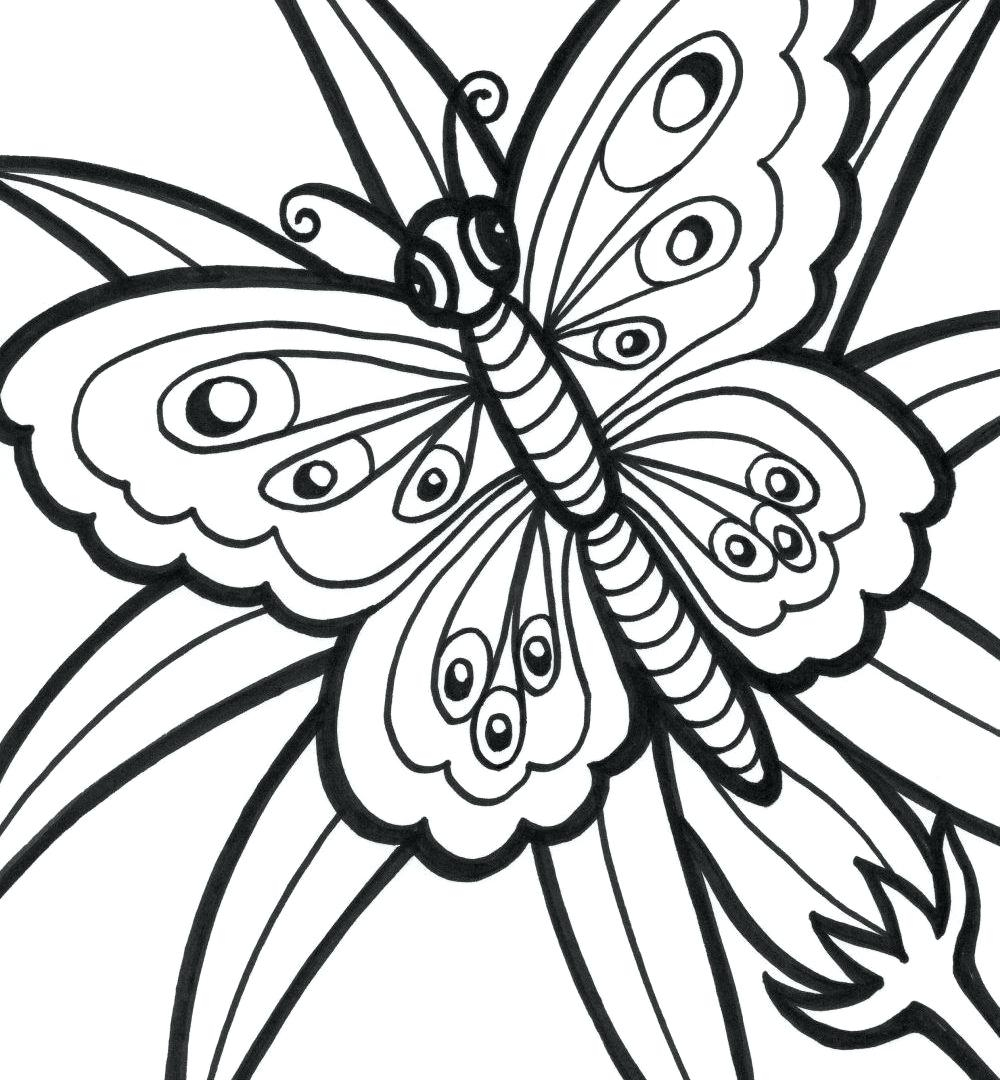 1000x1080 New Easy Butterfly Adult Coloring Pages Design Printable