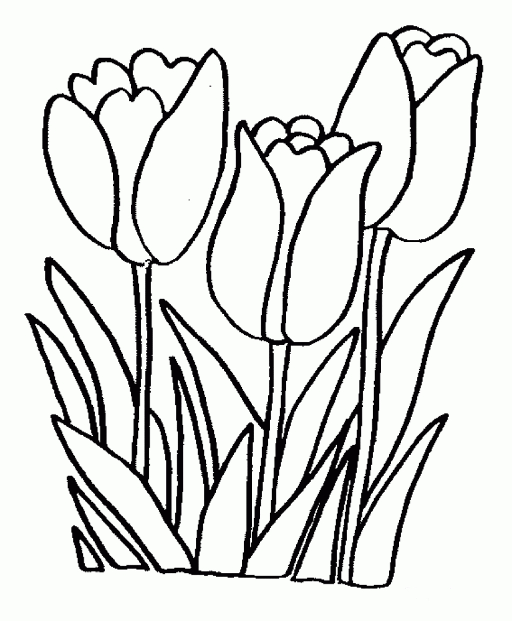 1025x1243 Coloring Pages Flower Free Printable Easy Within Plans