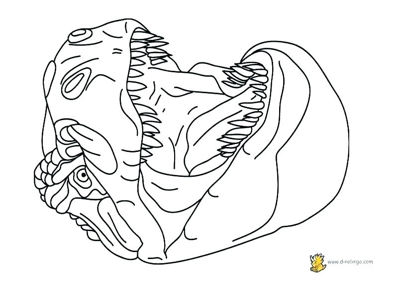 792x576 Puppet Coloring Pages Dragon Parade Puppet Coloring Page Free